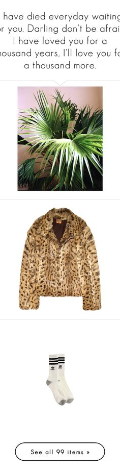 """""""I have died everyday waiting for you. Darling don't be afraid, I have loved you for a thousand years, I'll love you for a thousand more."""" by bitofbritt ❤ liked on Polyvore featuring pictures, photos, summer, outerwear, jackets, coats, fur, women, leopard jacket and brown jacket"""