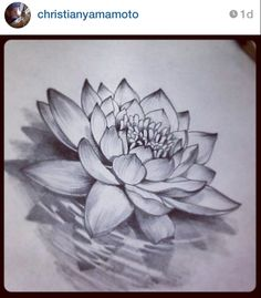 This lotus flower with the realist diamond in the middle is wat I want, no to just figure out where to put it hmmm! http://tattoo-ideas.us