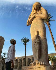Visit Egypt, Elephant, Animals, Animales, Animaux, Elephants, Animal, Animais