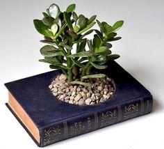 Make an old book into a tiny planter.