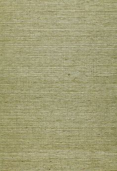 Shang Extra Fine Sisal Mineral T41168 Collection
