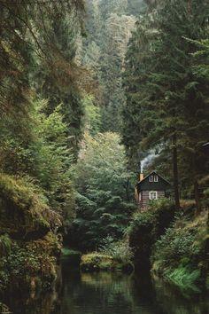 una cabaña en medio a un bosque