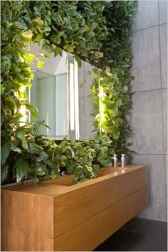 Peace lily, peperomia, and prayer plant climb up the master bath's teak vanity and onto the lavastone walls, creating a curtain of verdant, air-purifying foliage.