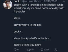 Steve and Bucky Funny Marvel Memes, Dc Memes, Marvel Jokes, Avengers Memes, Marvel Avengers, Marvel Comics, Loki, Bucky And Steve, Marvel Cinematic Universe