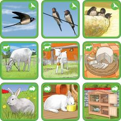 12 Farm Animals, Animals And Pets, Environmental Studies, Forest Theme, Animal Habitats, Preschool Education, Bible Crafts, Working With Children, Matching Games