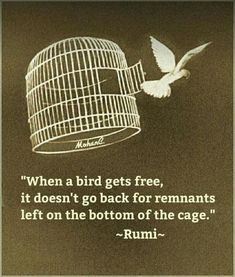 """""""When a bird gets free ."""" by Rumi, Century Persian Poet . Rumi Love Quotes, Bird Quotes, Sufi Quotes, Poetry Quotes, Spiritual Quotes, Wisdom Quotes, Positive Quotes, Me Quotes, Inspirational Quotes"""
