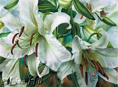 White Casa Blanca lilies in watercolor by artist Lisa Hill demo