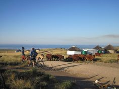 Wild Coast Transkei Mtb Tours – Guided Mountain Bike rides in South Africa Mountain Bike Tour, Mountain Biking, Tour Guide, Mtb, South Africa, Coast, Tours, Adventure, House Styles