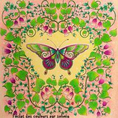 Take a peek at this great artwork on Johanna Basford's Colouring Gallery!  magical jungle coloriage : l'éclat des couleurs par solveig