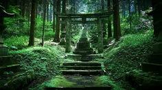 "This ""power spot"" in Kumamoto, Japan looks straight out of a Ghibli movie, is pure magic 【Photos】 Kumamoto, Kyushu, Beautiful World, Beautiful Places, Beautiful Scenery, Kubo And The Two Strings, Hotarubi No Mori, Japan Landscape, Art Asiatique"