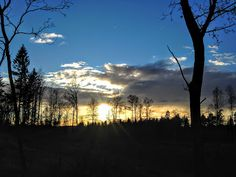 naturensdronning: Dagens utvalgte - 25. des 2015