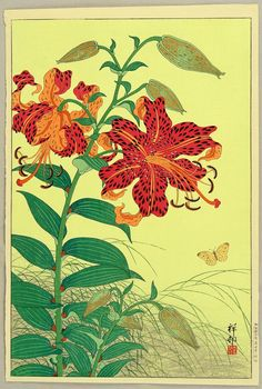 Ohara Koson: Tiger Lilies and Butterfly - 1934