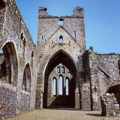 Inside the ruins of Dunbrody Abbey, Co Wexford Love Ireland, Irish Girls, Archaeology, Barcelona Cathedral, Travel Photos, Photo And Video, History, Places, Instagram