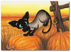 Siamese Cat Autumn Pumpkin Pounce  Art Print or by AmyLynBihrle, $8.99