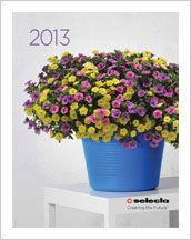 Selecta catalog 2013 Plant Catalogs, Literature, Planter Pots, Ideas, Literatura, Thoughts