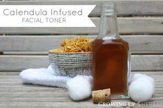 Calendula Uses: Our 14 Favorite Recipes and Remedies, calendula infused facial toner :)