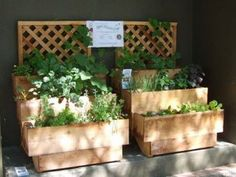 Herb Garden Ideas... I love the way this looks and doesn't take up too much space and is very organized!