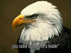 Don't let your victim spirit, keep u on being a great leader.