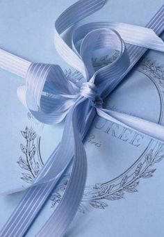 French Blue Bow of Laduree