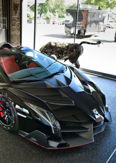 Lamborghini Veneno Roadster _______________________ WWW.PACKAIR.COM