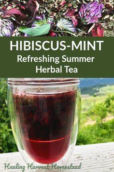Hibiscus-Mint Herbal Tea Recipe for Summer Refreshment Hot this summer? Here is a refreshing, hibiscus-mint herbal tea recipe that is. Herbal Cure, Herbal Remedies, Health Remedies, Herbal Tea Benefits, Herbal Teas, Pineapple Health Benefits, Homemade Tea, Iced Tea Recipes, Hibiscus Tea