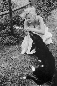 Мэрилин Монро | Marilyn Monroe Marylin Monroe, Fotos Marilyn Monroe, Classic Hollywood, Old Hollywood, Hollywood Glamour, Hollywood Stars, Hollywood Actresses, Cinema Tv, Norma Jeane