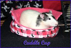 "Click for lots of TUTORIALS for Rat Hammocks/Accessories (including cuddle cups, ""bunk-bed"" hammocks, bonding pouches, & LOTS more!) // #rats #DIY #tutorial"