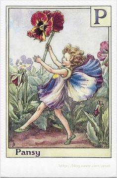 A Flower Fairy Alphabet #2 (시슬리 메리바커) : 네이버 블로그