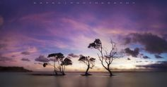 Beachmere Panorama #Australia