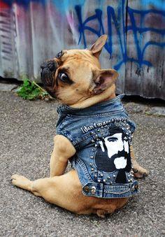 Psí vesta - Motorhead