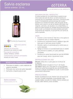 Clary sage, Salvia Esclarea, usos