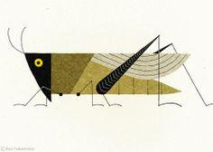 atelierentomologica: Grasshopper, Ryo Takemasa