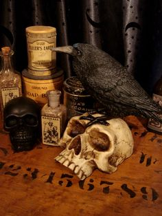 Gothic Raven on Skull Statue at Gothic Rose Antiques http://www.gothicroseantiques.com/GothicRavenonSkullStatue.html own this!