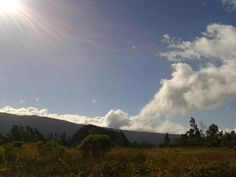 Plaine des Palmistes Reunion Island
