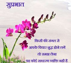 2019 Good Morning Images With Quotes In Hindi Shayari Photo Good Morning Babe Quotes, Good Morning Wishes Gif, Good Morning Friends Images, Motivational Good Morning Quotes, Beautiful Morning Quotes, Latest Good Morning Images, Good Morning Nature, Good Morning Beautiful Images, Morning Greetings Quotes