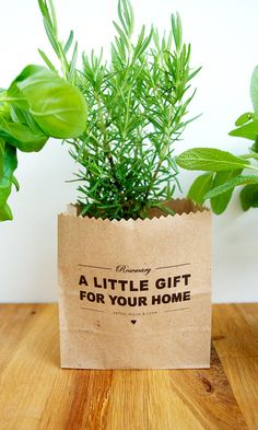DIY Garden Starter Gift Bags by @Nerissa, The New Domestic