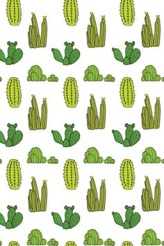 Baines and Fricker Cactus Wallpaper
