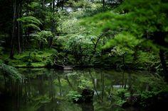 Kokedera (Moss Temple), Kyoto