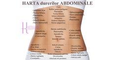 HARTA abdominala a DURERILOR: ce organe sufera in functie de localizarea durerii Mai, Healthy, Diet, Movies, Health