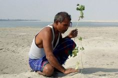 Man plants a tree daily for 35 years, grows a forest bigger than New York's Central Park Central Park, Forest Department, Tree Day, Forest Habitat, Tree Seeds, 16 Year Old, Animals Of The World, Vatican, Bengal