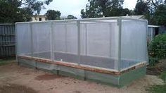Image result for wicking beds