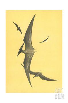 Pterodons Art Print at Art.com Dinosaur Posters, Find Art, Framed Artwork, Mammals, Moose Art, Elephant, Art Prints, Gallery, Cute