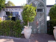 One day I wish to eat at Sur Lounge in Beverly Hills!
