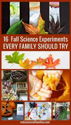 Looking for something interesting to do with your children this fall? I've collected 16 fall science experiments that will really wow your kids. Get ready to have some serious fun!
