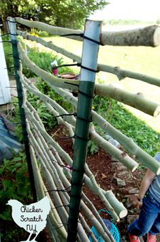 Cheap DIY Garden Trellis - Give your climbing plants a hand with this budget friendly t-post trellis. T-posts, zip ties and bra - Bamboo Garden, Diy Garden, Lawn And Garden, Garden Ideas, Diy Trellis, Garden Trellis, Rustic Gardens, Outdoor Gardens, Climing Plants