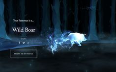 "When I first learned that my patronus was a wild boar, I was discouraged. ""A boar? Harry Potter Online, Wild Boar, Learn To Love, Hogwarts, Animals, Ideas, Dragon Age, Dragons, Animales"