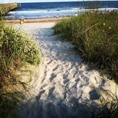 Isle of Palms is one of South Carolina's best beaches.