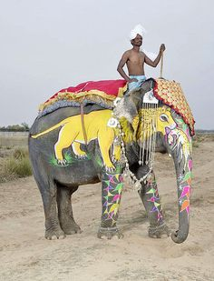 The Painted Elephants of Jaipur | Hint Fashion Magazine