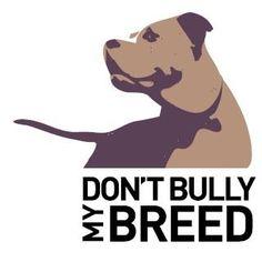 Stop BSL!