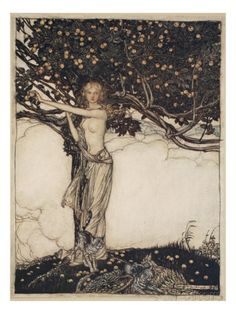 Freia, the goddess of youth and beauty, grows the magic apples that keep the gods young and powerful. The Rhinegold & The Valkyrie (1912) illustrated by Arthur Rackham (English, 1867-1939)